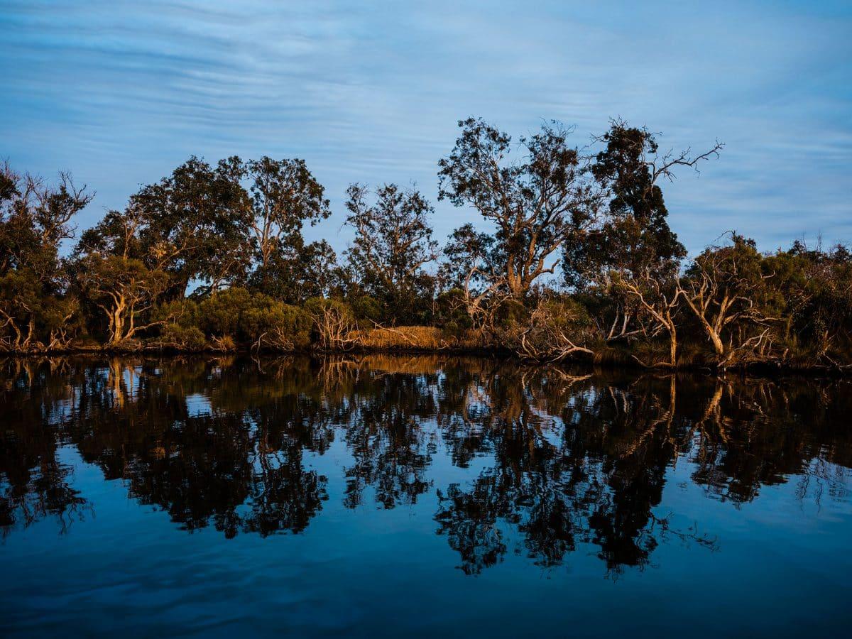 Murray River Pinjarra