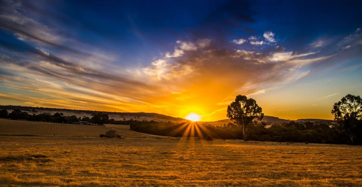 Boddington-Sunrise at Shepards Turn
