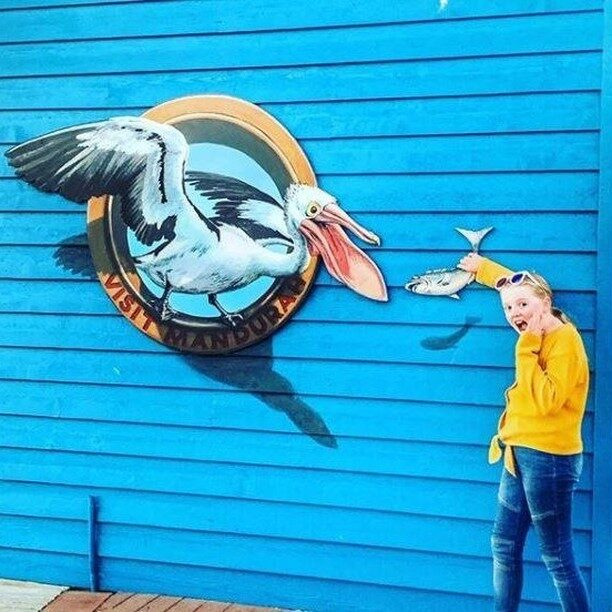 When you walk around the #Mandurah Ocean Marina, you find this greedy fellow. Did you know that an adult pelican may eat up to 1.8 kilograms of fish per day? Well, this one is particularly hungry and clearly doesn't like to share! Get creative here and snap another fun pic.📷 @thedanielsfamilytravels#visitmandurah #seePerth #helloperth #soperth #perthisok #thisisWA #westernaustralia #wanderoutyonder