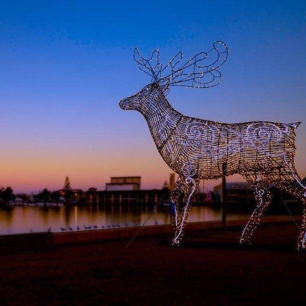 Look at this amazing, calming 📷 by @mandurahlive - that's one of the larger than life Christmas characters along the Mandurah Christmas Lights Trail.   Sending warmest seasons greetings to all, we hope you have a memorable Christmas🎅. Stay safe and sun-smart and enjoy making your #mandurahmoment  #visitmandurah #mandurah #seeperth #wanderoutyonder #thisiswa #westernaustralia